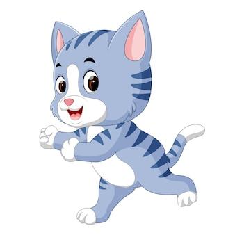 Süße Katze Cartoon