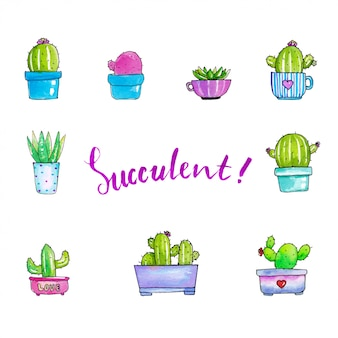 Süße Sukkulenten-Illustrationen