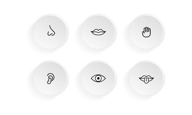 Symbolsatz der menschlichen sinne: sehen, riechen, hören, berühren, schmecken. auge, nase, ohr, hand, mund mit zunge. vektor auf weißem hintergrund isoliert. eps 10.