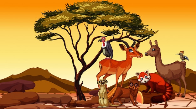 Szene mit afrikanischen tieren auf dem gebiet