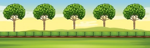 Szene mit bäumen und feld