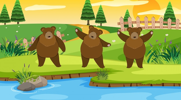 Szene mit drei bären im park