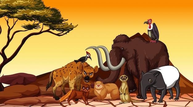 Szene mit vielen tieren auf dem feld