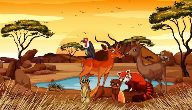 Szene mit vielen tieren auf dem gebiet