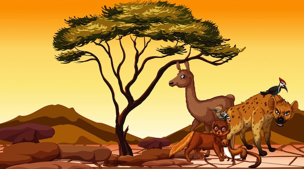 Szene mit vielen tieren in der wüste