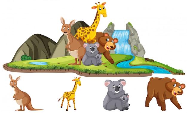 Szene mit vielen wilden tieren am wasserfall am tag