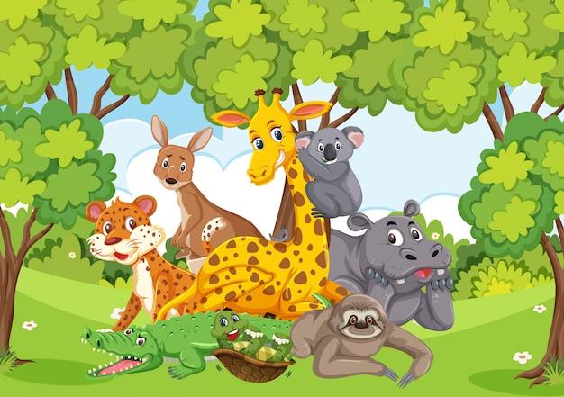 Szene mit vielen wilden tieren im wald