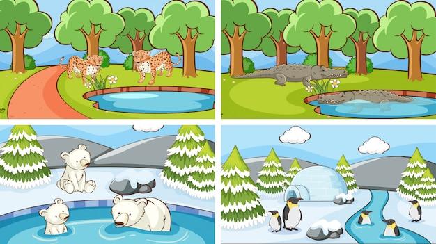Szenen von tieren in freier wildbahn