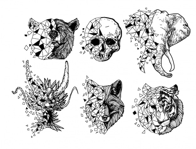 Tätowierungskunsttiger-drachewolfelefant-schädelzeichnung und -skizze schwarzweiss