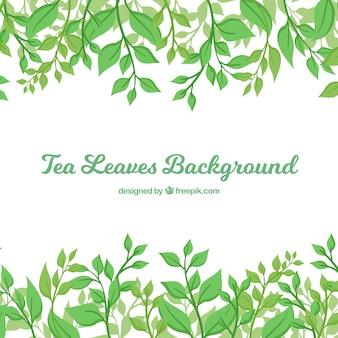 Teeblätterhintergrund in der flachen art