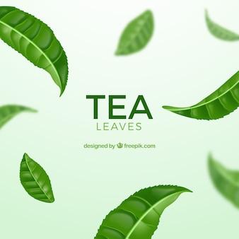 Teeblätterhintergrund mit realistischer art