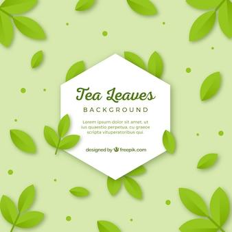 Teeblatthintergrund mit flachem design