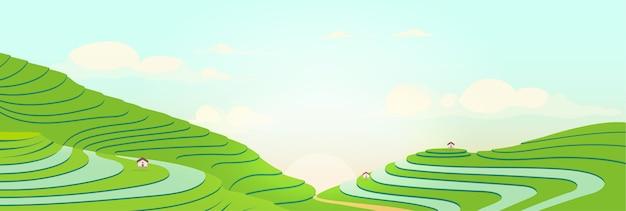 Terrassenförmige felder bei sonnenaufgang-farbillustration