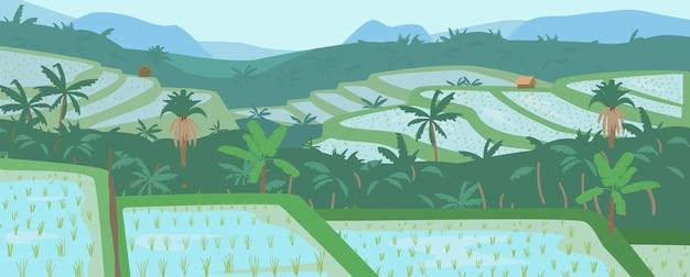 Terrassierte asiatische reisfelder in gebirgslandschaft. traditionelle landwirtschaft.