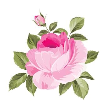 The blooming rose, ein einzigartiger blumenstrauß.