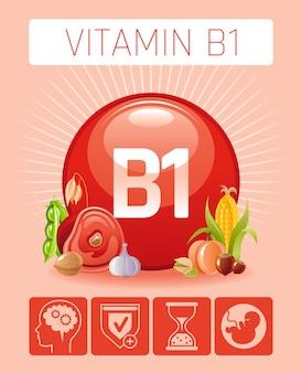 Thiamin vitamin b1 reich an lebensmitteln ikonen mit menschlichem nutzen. flaches icon-set für gesundes essen. diät infografik diagramm poster mit schweinefleisch, sojabohnen, haferflocken tabelle vektor-illustration, menschlichen nutzen