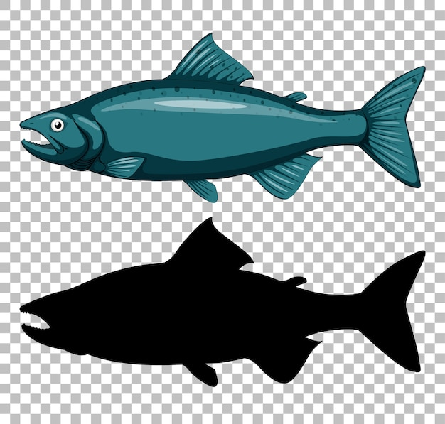 Thunfisch mit seiner silhouette auf transparent