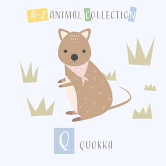 Tier-alphabet q des netten quokka cartoon-gekritzels q