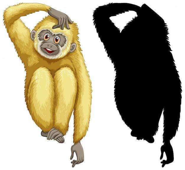 Tier mit seiner silhouette