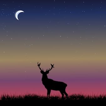 Tier silhouette hintergrund