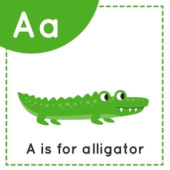 Tieralphabet karteikarte für kinder. lernbuchstabe a. a ist für alligator.
