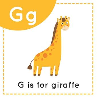Tieralphabet-karteikarte für kinder. lernbuchstabe g. g ist für giraffe.