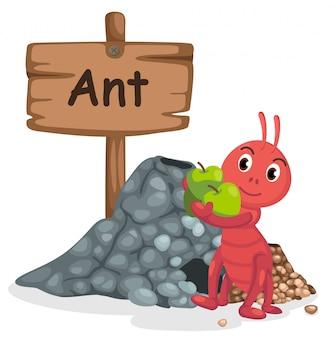 Tieralphabetbuchstabe a für ameise
