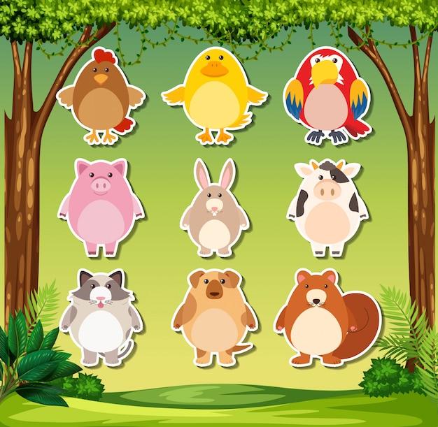 Tieraufkleber auf naturhintergrund