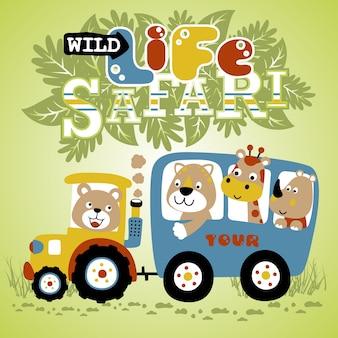 Tiere auf dem fahrzeug