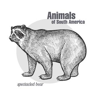Tiere des südamerikanischen brillenbären.