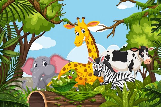 Tiere in der dschungelszene