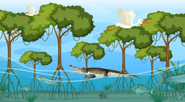 Tiere leben tagsüber im mangrovenwald