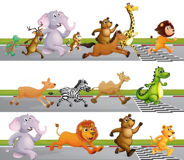 Tiere rennen rennen an der ziellinie