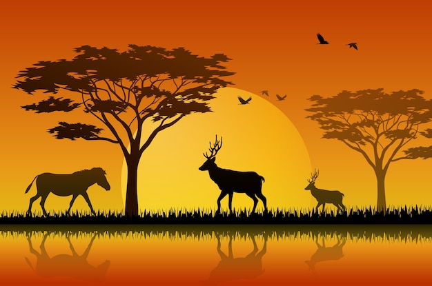 Tiere silhouettieren im sonnenuntergang am savanah
