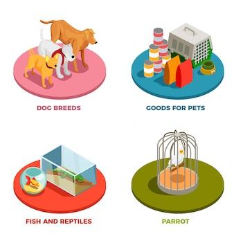 Tierhandlung 2x2 design-konzept