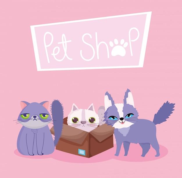 Tierhandlung, hässliche und flauschige katzen im hauskarikatur des kastentiers