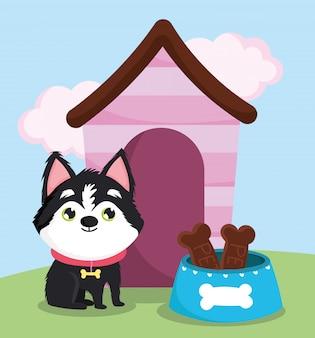 Tierhandlung, kleiner hund mit knochenhalsbandfutter und haustierkarikatur des haustiers
