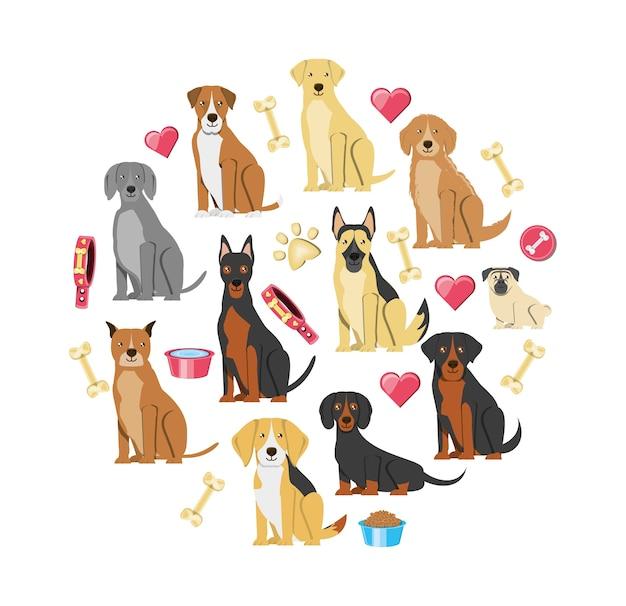 Tierhandlung veterinärelemente