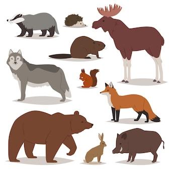 Tierische karikaturtierfiguren des waldtiers tragen fuchs und wilden wolf oder eber in waldillustrationssatz von elchigel und eichhörnchen lokalisiert auf weißem hintergrund