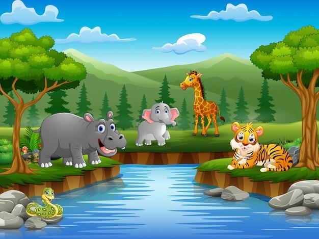 Tierkarikatur genießen natur durch den fluss