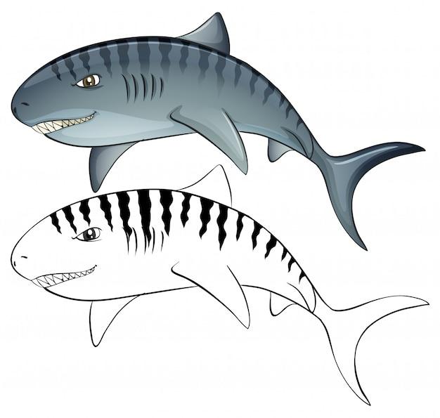 Tierumriss für hai