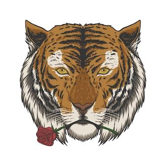 Tiger beißende rosenillustration