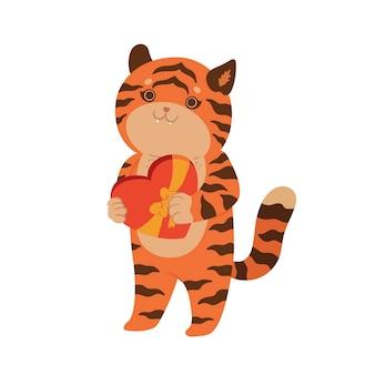 Tiger, der eine schachtel pralinen hält, isolieren auf weißem hintergrund. vektorgrafiken.