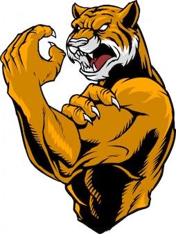 Tiger kämpfer