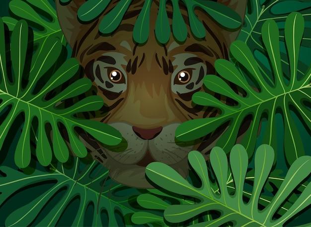 Tiger versteckt im hintergrund der tropischen blätter