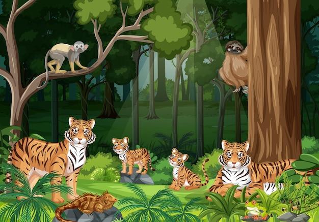 Tigerfamilie im waldlandschaftshintergrund