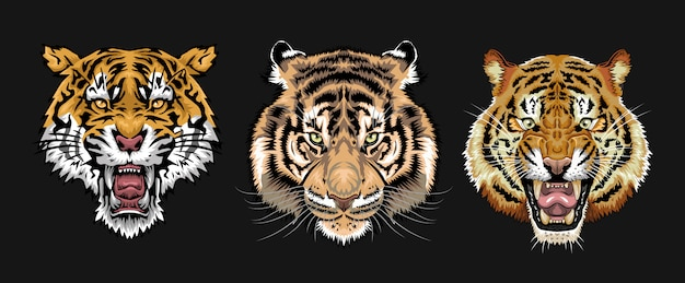 Tigergesicht eingestellt