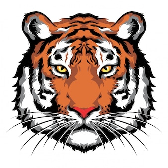 Tigerkopf-front-look