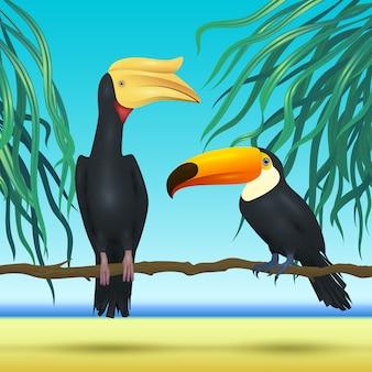 Toco tukan und nashorn, rechnung, realistische vögel, die auf tropischem hintergrund des zweigs mit strandmeer sitzen