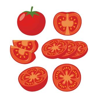 Tomaten-abbildung